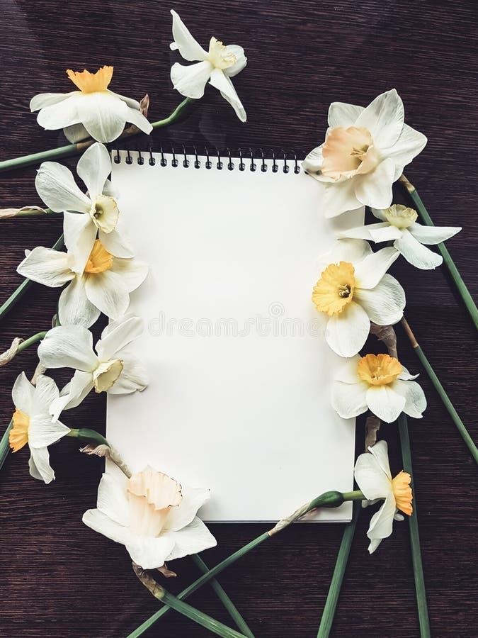 Strato bianco vuoto dell'album con i fiori leggeri fotografia stock
