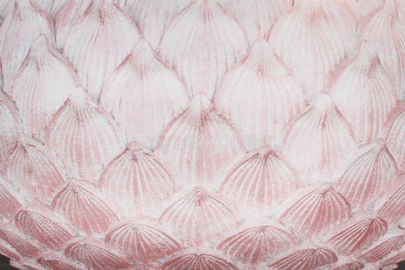 Strato dei modelli di vecchia struttura rosa dei petali del loto dello stucco per fondo fotografia stock