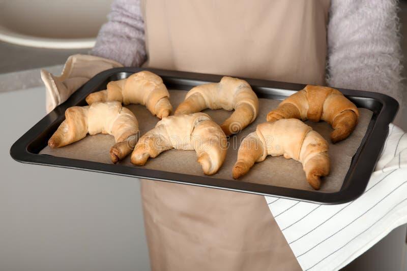 Strato di cottura della tenuta della donna con i croissant di recente al forno fotografia stock