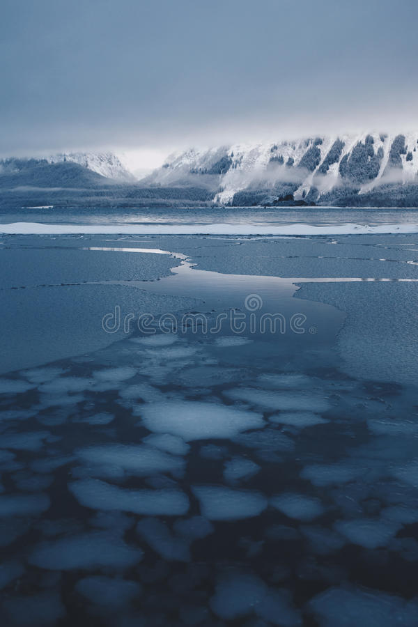 Strato di ghiaccio che tagliato sulla riva d'Alasca immagini stock libere da diritti