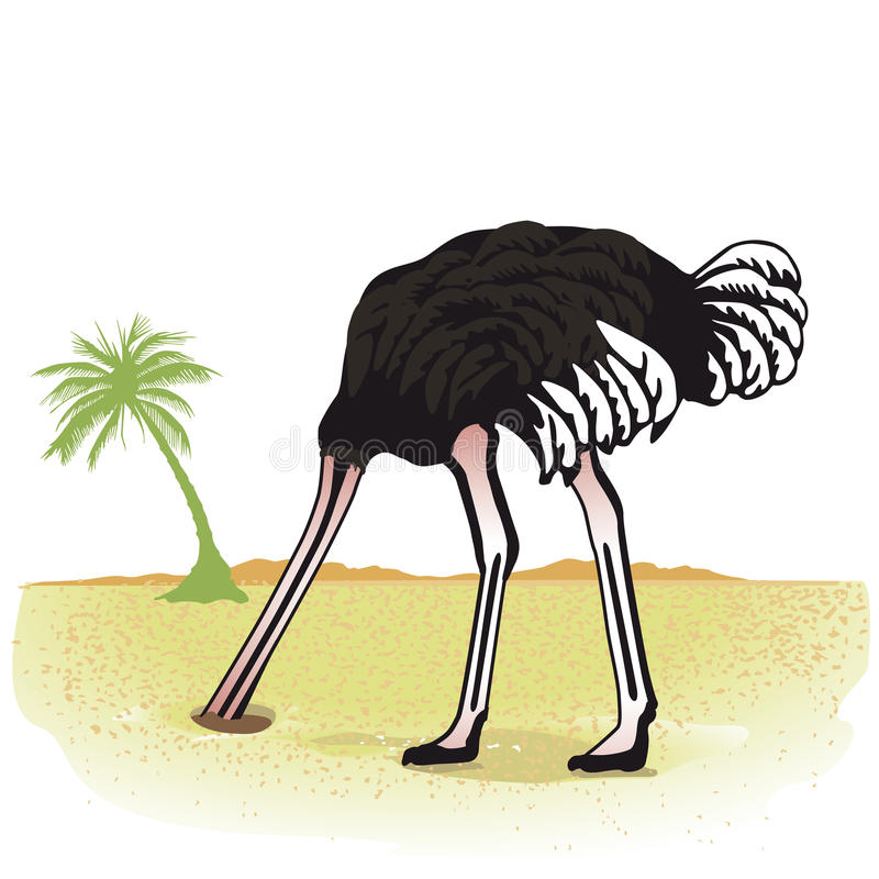 Strauß mit Kopf im Sand stock abbildung