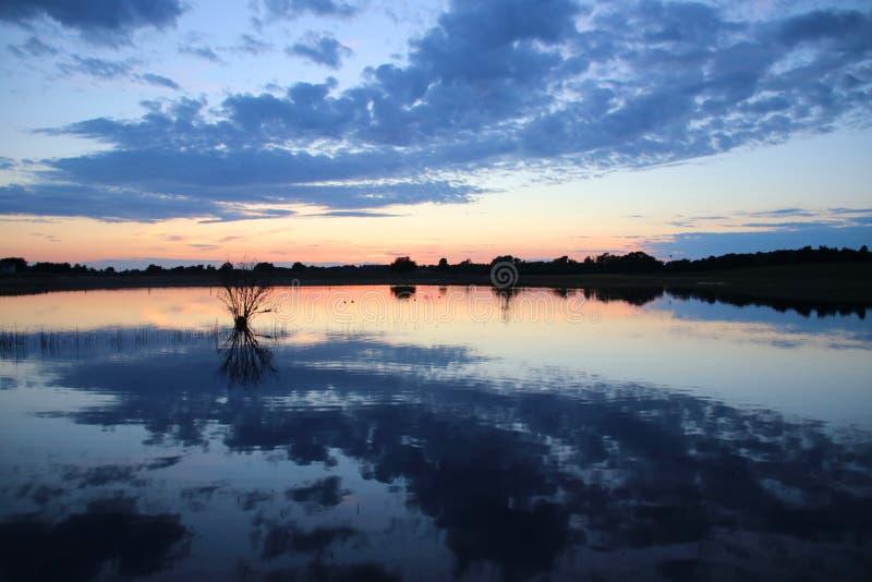 Strauch und Wolken im See bei Sonnenuntergang stockbilder