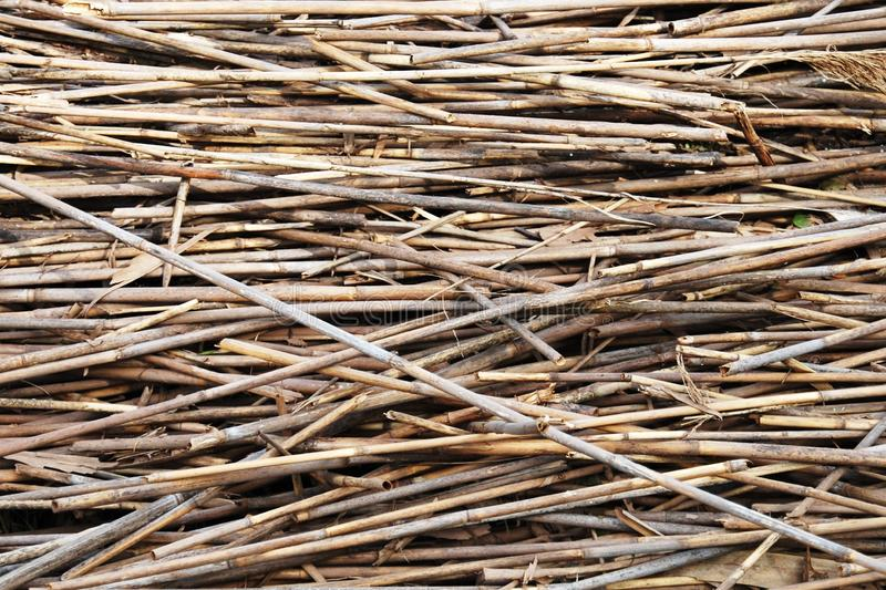 Download Straw stock image. Image of gold, field, crop, harvesting - 21255415