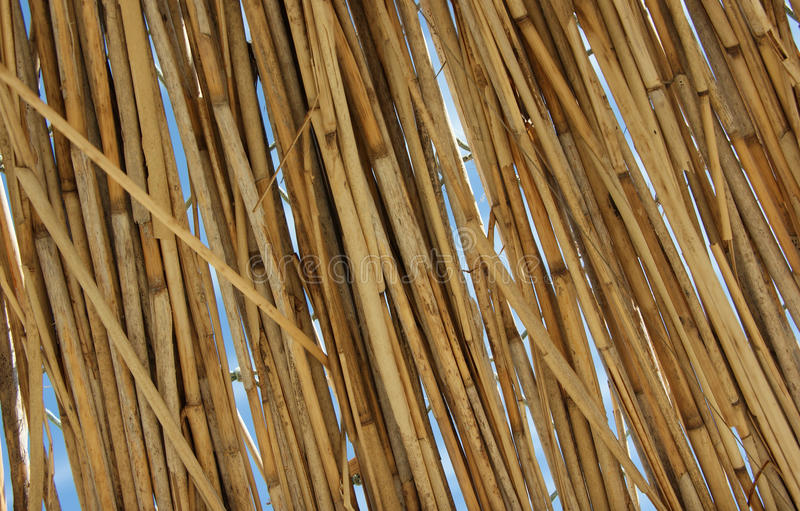 Download Straw stock photo. Image of striped, thatch, stick, natural - 25299644