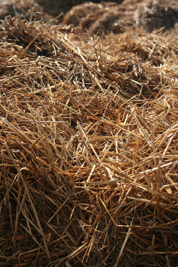 Download Straw stock image. Image of autumn, background, straw - 4437739
