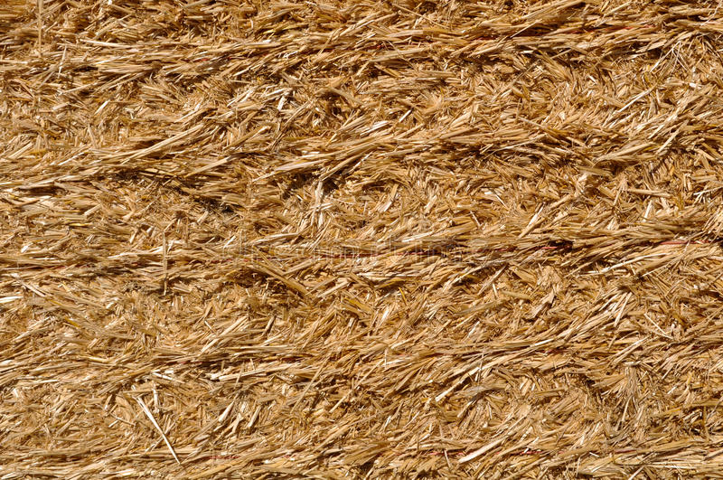 Download Straw Background stock image. Image of autumn, background - 16344781