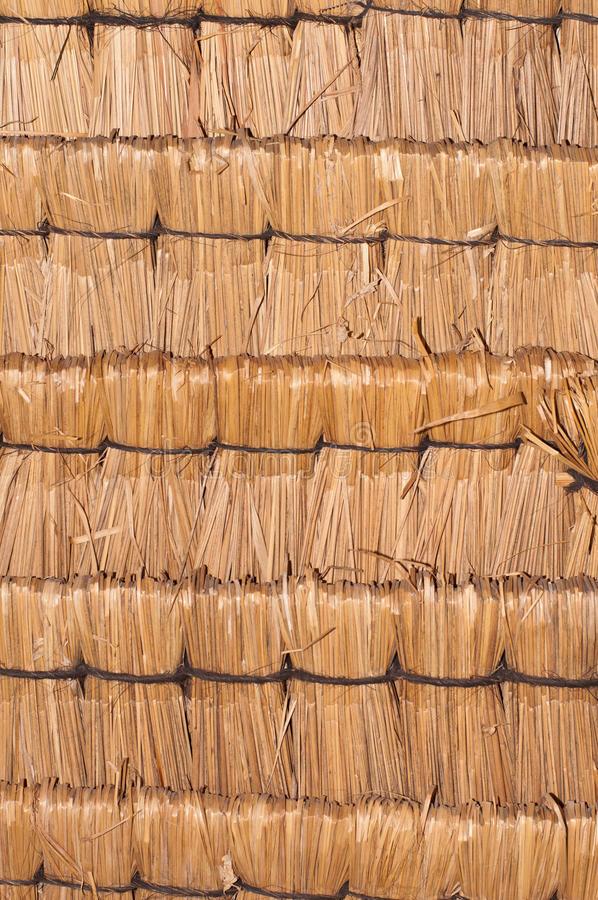 Download Straw Background stock photo. Image of color, sago, rows - 21928060