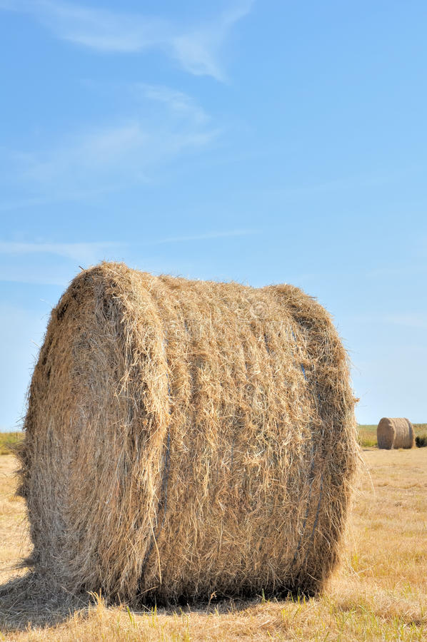 Free Straw Bale Royalty Free Stock Photography - 19525167
