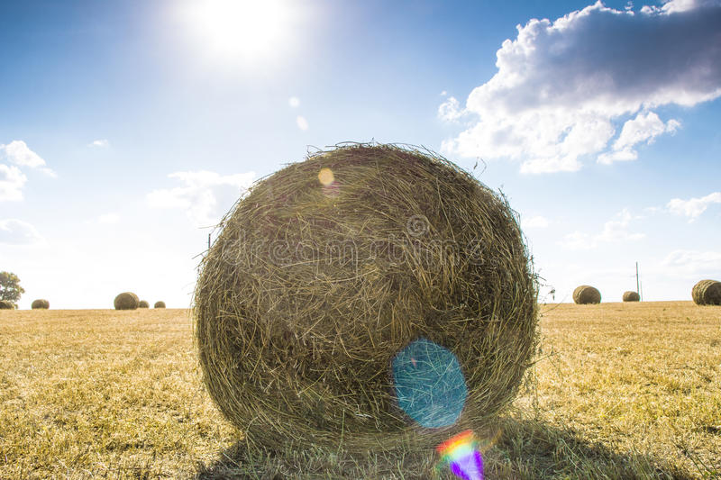 Straw bale on the field. Bales of straw on the mown pole.Goluboe sky with clouds royalty free stock photos