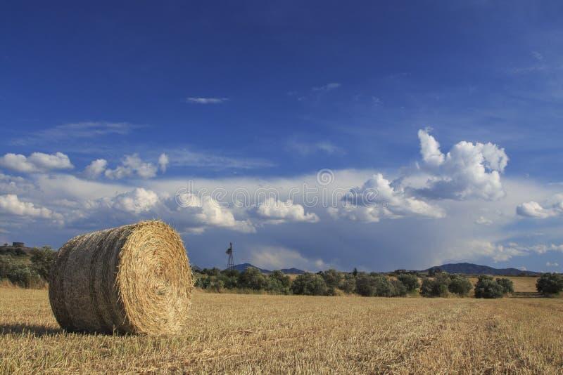 Straw Bale Landscape stock afbeeldingen