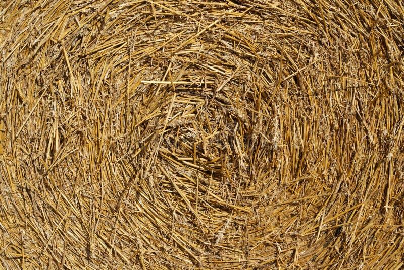 Straw Bale Texture stock photos