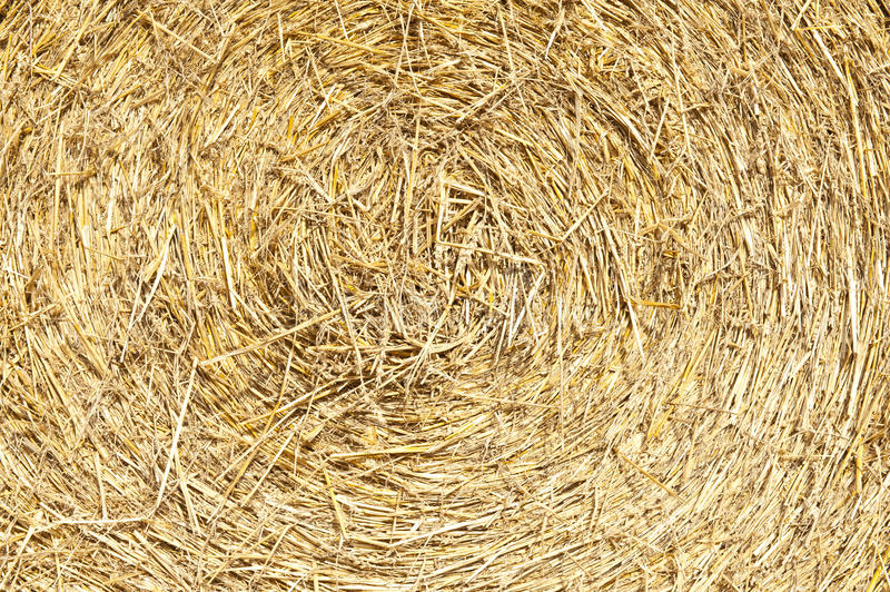 Download Straw bales stock image. Image of yellow, countryside - 28565969
