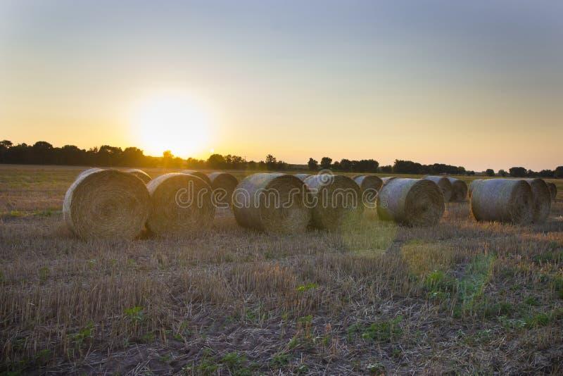 Straw Bales photos stock