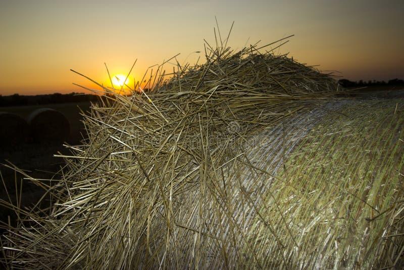 Straw Bales image stock