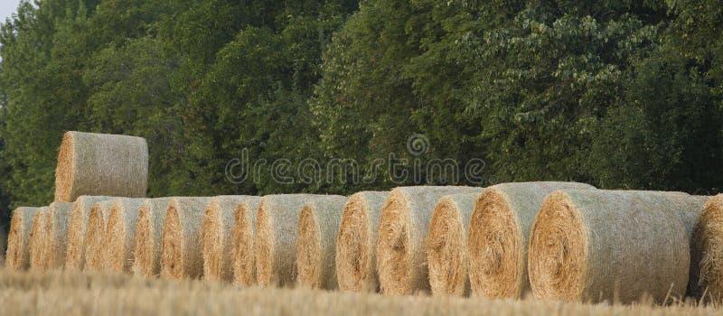 Straw Bales fotografia stock libera da diritti