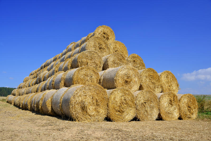Download Straw Bales Stock Photo - Image: 39239568