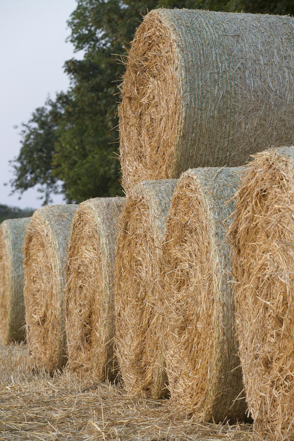 Straw bales royalty free stock photos