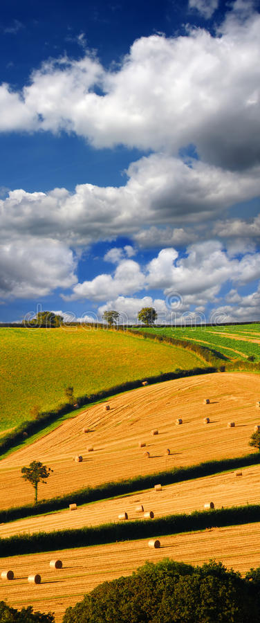 Download Straw Bales On The Field In England Stock Image - Image of mystery, landscaped: 26243369