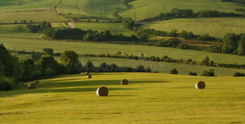Straw Bales In Landscape Royalty Free Stock Photos