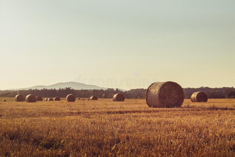 Straw Bales op een Stoppelveld stock foto