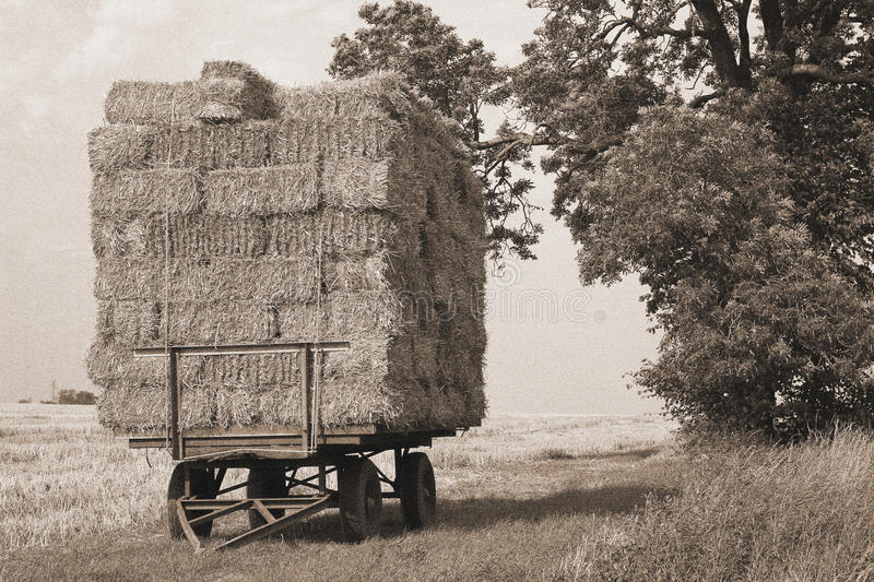 Straw bales, sepia, vintage photograph look. royalty free stock images
