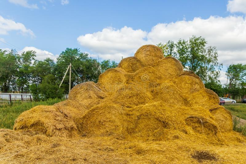 Straw bales on a sloping field On a sunny day. Straw bales on a sloping field On a sunny summer day stock photo