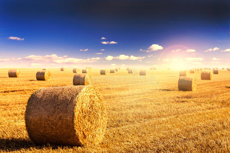 Straw bales and sunset royalty free stock photos