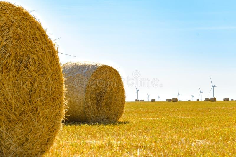 Straw Bales sur le champ jaune lumineux sous le ciel bleu Turbines de générateur de vent sur le fond photos libres de droits