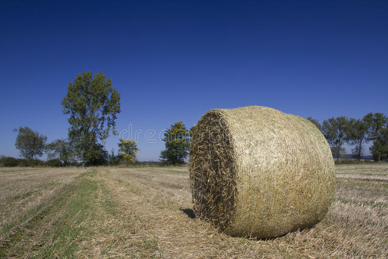 Straw ball stock photography
