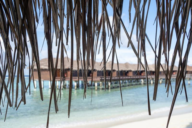 Straw from a beach cabana with overwater beach hut villas intentionally blurred. Useful for backgrounds.  stock photos