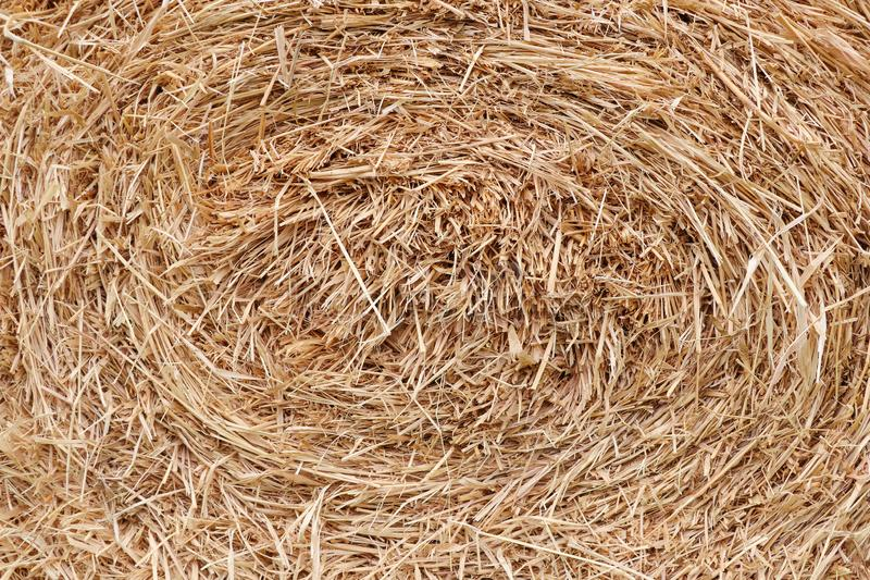 Straw briquette texture background. In farm field stock photos