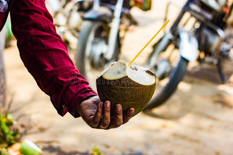 Straw in coconut water offered by seller. cool natural tropical drink.  royalty free stock images