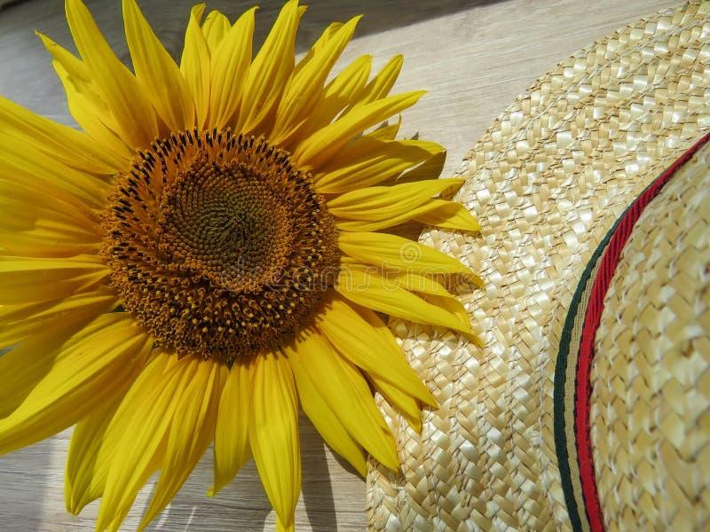 Straw Hat och solrosor på träbakgrund arkivbilder