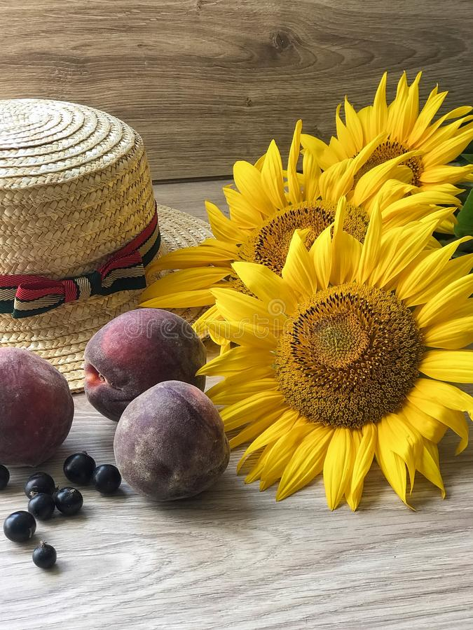 Straw Hat sunflowers on the table stock image