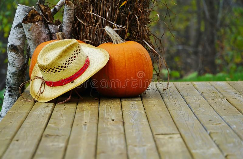 Straw hat and pumpkin stock image