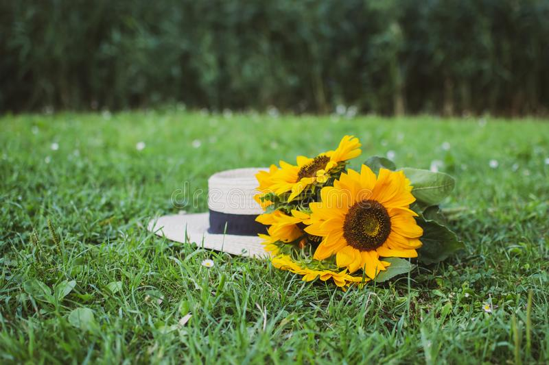 Straw Hat with Sunflowers Summer Background Nature Concept Green Grass stock image