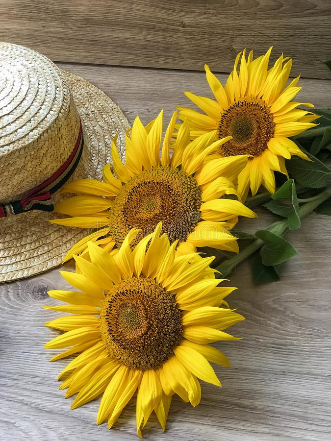 Straw Hat sunflowers on the table royalty free stock images