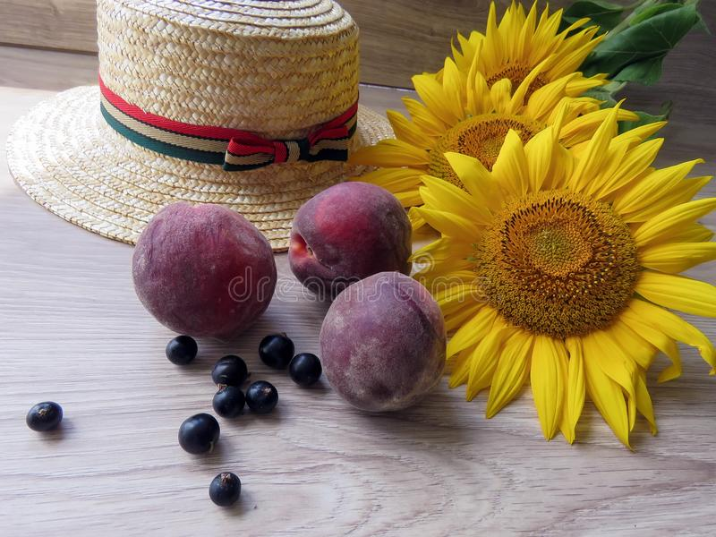 Straw Hat sunflowers on the table stock images