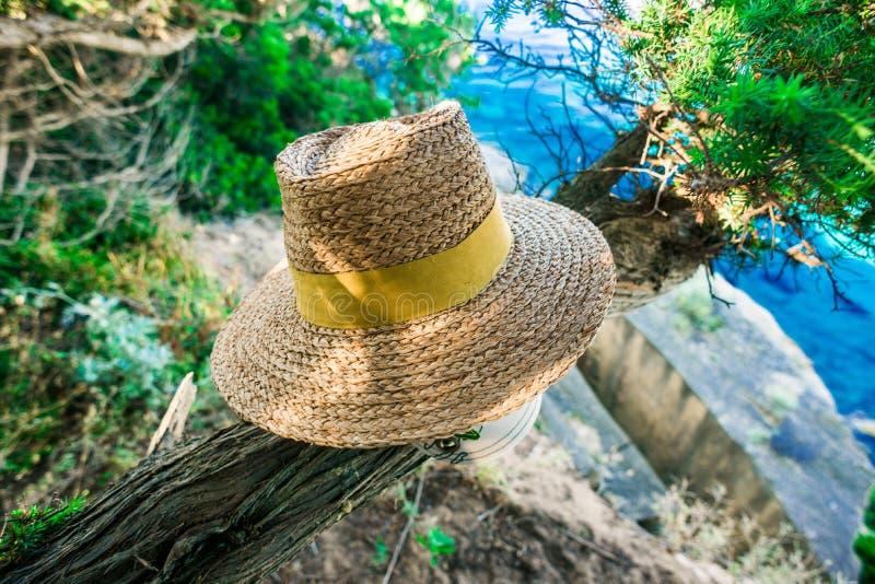 Straw Hat sur l'arbre photos stock