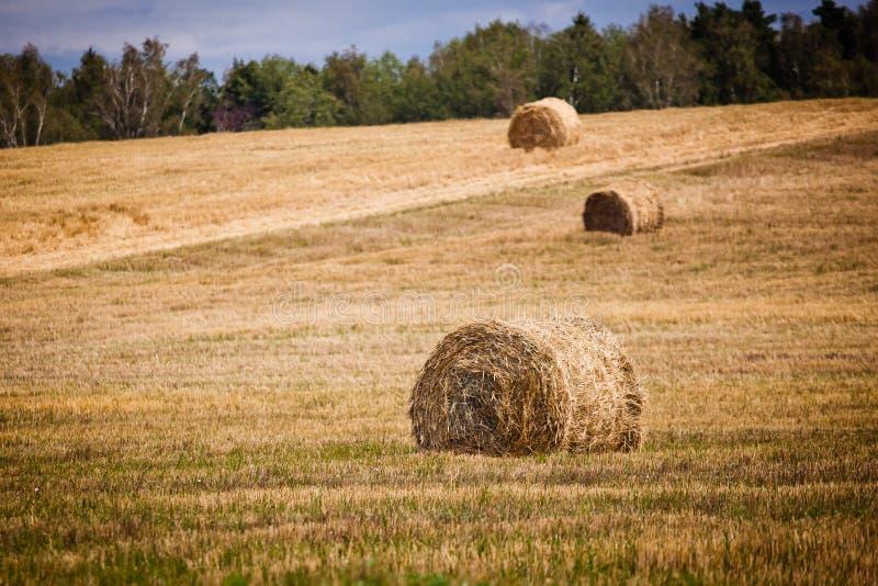 Straw Haystacks Stock Photos