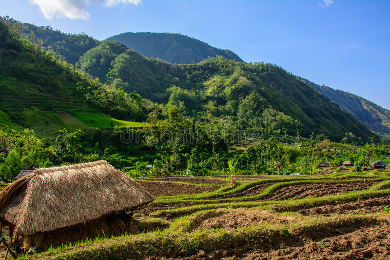 Straw house in mountain village, Amed, Bali Indonesia stock photos