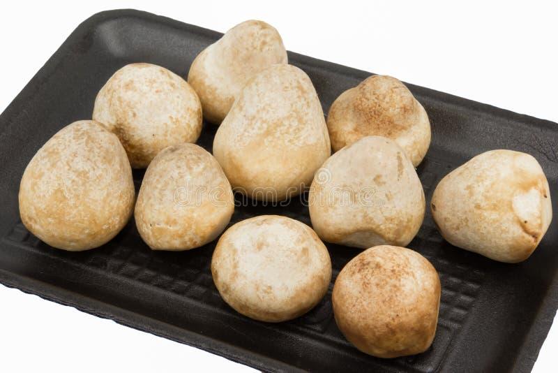 Straw Mushroom nel pacchetto della schiuma, isolato fotografie stock