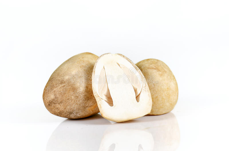 Straw mushroom on white background. royalty free stock photos
