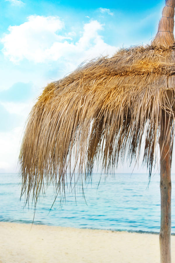 Download Straw parasol stock photo. Image of shore, summer, color - 20329742
