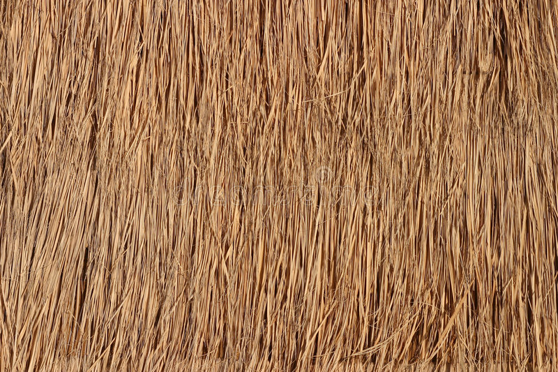 Download Straw Roof Texture For Background Stock Image - Image of photo, textures: 1739