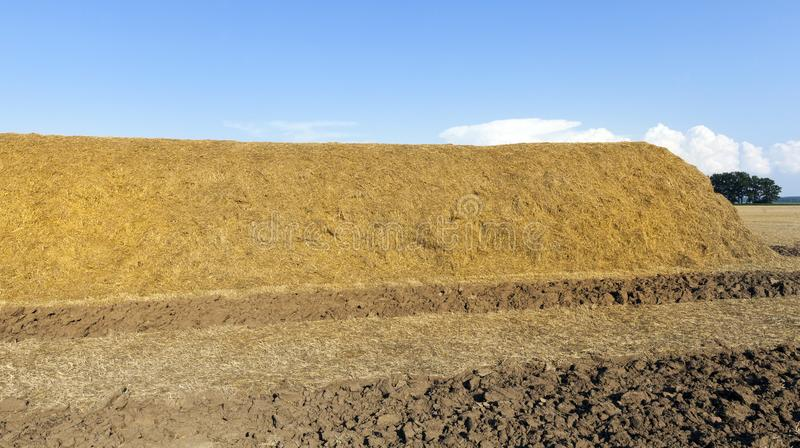 a straw stack stock images