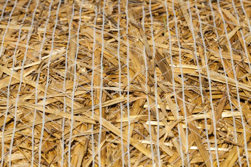 straw stack stock images