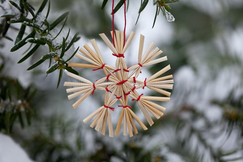 Straw Star Christmas Ornament In The Snow. Winterly Christmas scenery with traditional straw stars on a snow-covered fir branch royalty free stock images