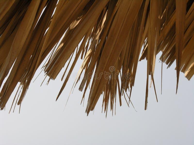 Straw Sunshade Close-up Free Stock Photo