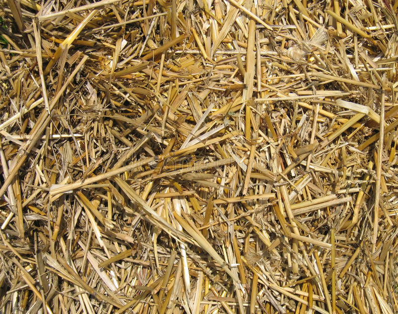 Download Straw texture stock photo. Image of yards, farms, harvest - 9492